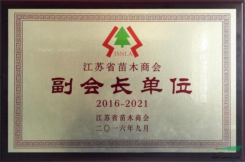 江苏省苗木商会副会长单位