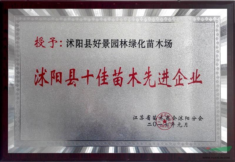 好景园林-沭阳县十佳苗木先进企业